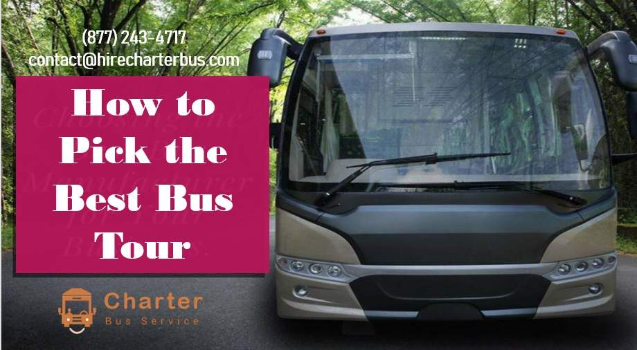 What to Expect When Taking a Bus Tour