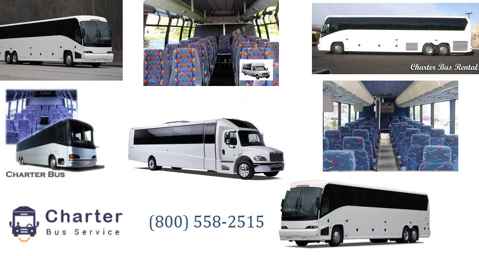 Hire Charter Bus Service: A Name You Should Never Forget
