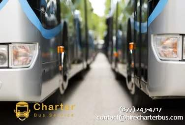 Mini Charter Bus Near You