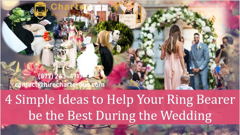 4 Simple Ideas to Help Your Ring Bearer be the Best During the Wedding